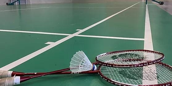 location salle badminton Pau 64